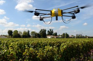 The Fertile Common Ground Between Technology and Agriculture