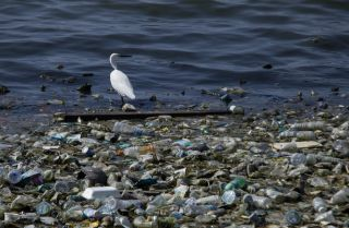 Plastic waste litters the shore of a reservoir in Lhokseumawe, Indonesia, on June 28, 2019.