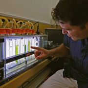 The head of the renewable energy laboratory at Israel's Tel Aviv University researches how to harness hydrogen from plants to potentially use as a new form of electricity on June 11, 2020.